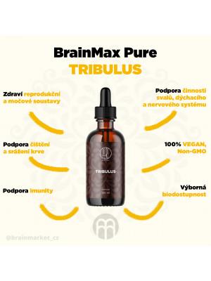 BrainMax Pure Tribulus tinktura, 100 ml