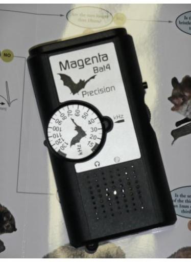 Detektor a identifikátor netopýrů Magenta 4