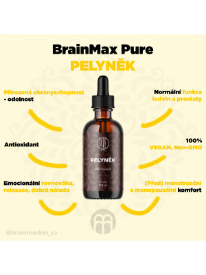 BrainMax Pure Pelyněk (Wormwood) tinktura, 100 ml
