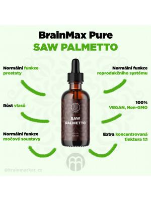 BrainMax Pure Saw Palmetto tinktura, 100 ml
