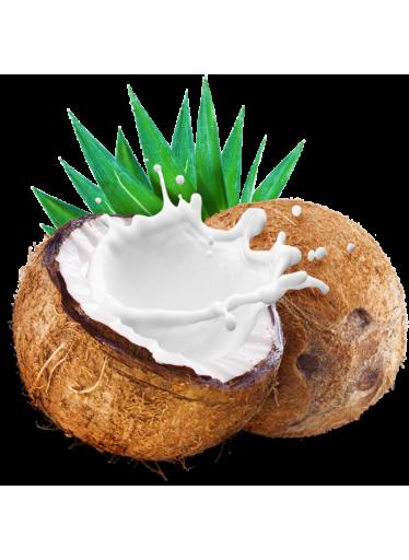 LifeLike sušené kokosové mléko 250g