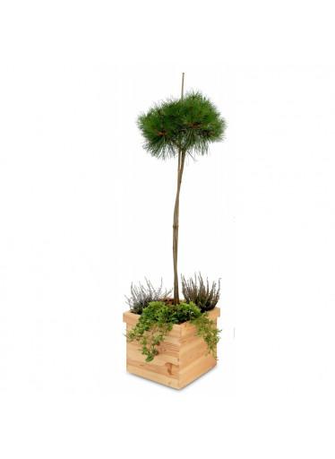 ČistéDřevo Dřevěný čtvercový květináč 32 x 32 x 25 cm