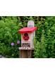 Wildlife World Domek pro berušky a včelky samotářky
